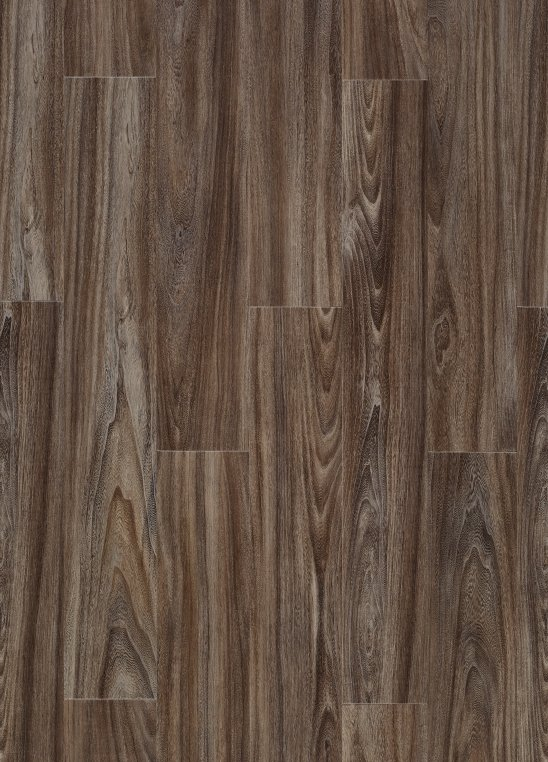 Baltic Maple 28884