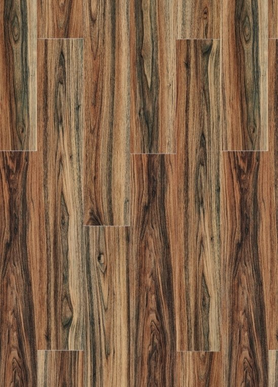 Persian Walnut 20444